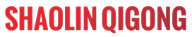 Denise Fürst, Heilpraktikerin –Qigong Shaolin –Logo